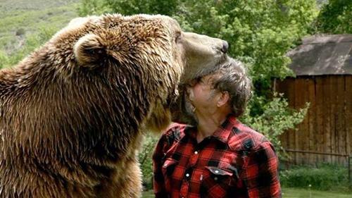 곰의 입 속에 머리를 넣은 남성