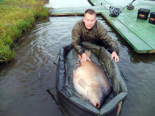 헝가리에서 잡힌 40kg 잉어