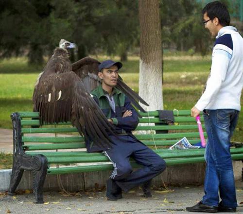 독수리의 보호를 받는 남성