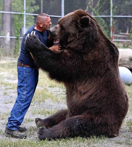 거대한 곰과 포옹하는 남성