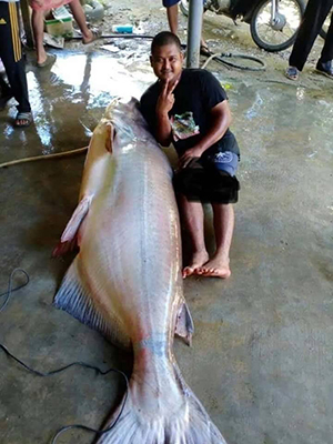 150kg '거대' 어류를 잡은 낚시꾼